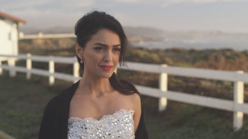 Shirin In Love- Nazanine Boniadi